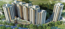 orchard avenue, signature global