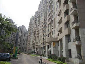 residential apartment, delhi-ncr, sector-50, image