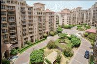 residential apartment, delhi-ncr, dlf-ii, image
