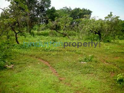 residential land, goa, cuncolim, image