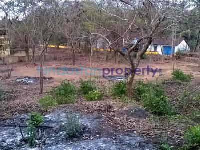 residential land, goa, nachinola, image