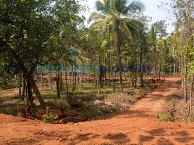 residential land, goa, shiroda, image
