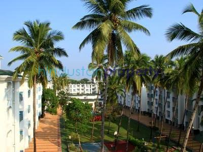 residential apartment, goa, vanelim, image