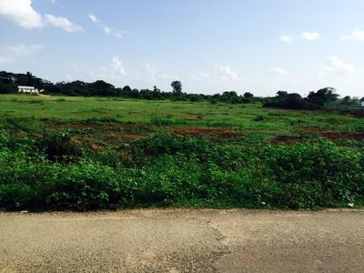 residential land, hyderabad, thimmapur, image