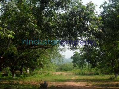 residential land, lucknow, telibagh, image