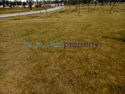 residential land, lucknow, khujauli, image