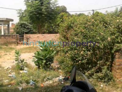 residential land, lucknow, nilmatha, image